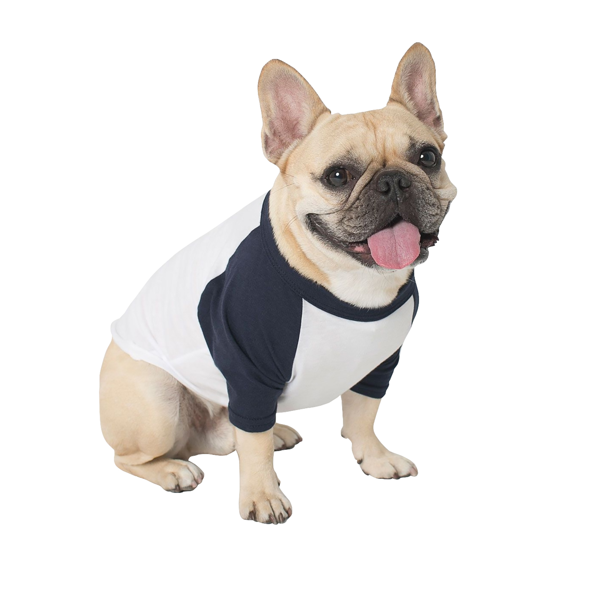 Design your own t shirt american apparel - American Apparel Two Tone 3 4 Sleeve Dog